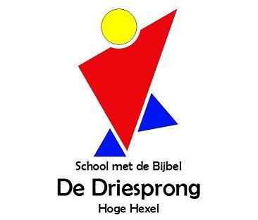 School met de Bijbel - De Driesprong